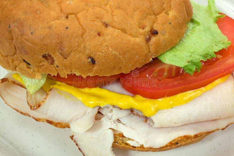 Download Близкий взгляд сандвича индюка Стоковое Изображение - изображение насчитывающей заедк, здорово: 41662557