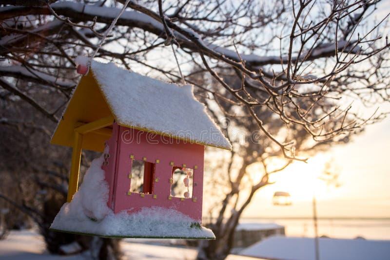 Близкий взгляд фидера деревянной птицы в зиме дальше стоковое фото rf