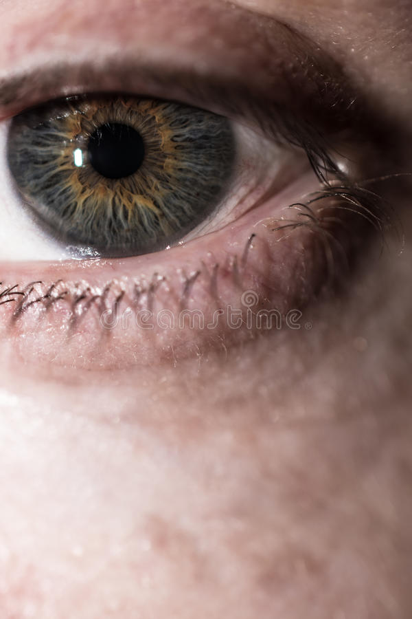 Download близкий человек глаза вверх Стоковое Изображение - изображение насчитывающей состав, оптически: 81809277