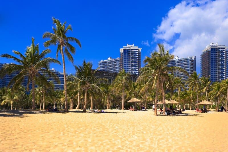 Близрасположенные общины пляжа стоковое изображение