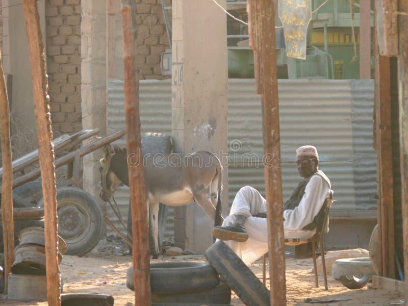 ВАДИ - HALFA, СУДАН - 19-ОЕ НОЯБРЯ 2008: Суданец жизни. стоковые изображения