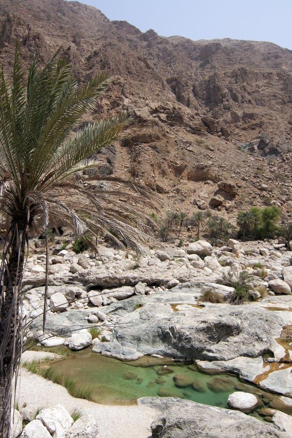 вади shab Омана стоковое фото rf