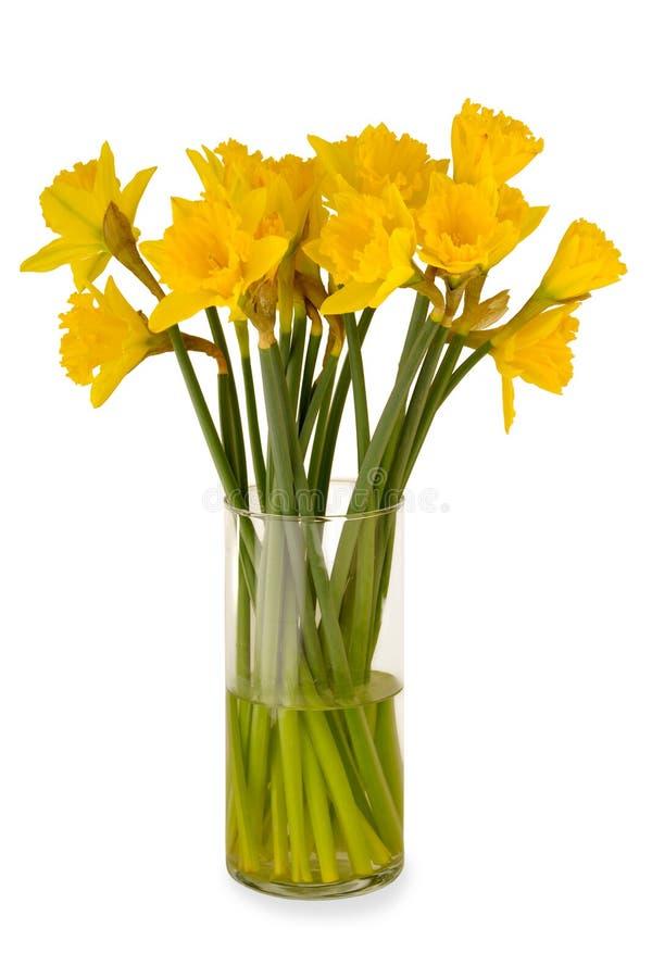 Ваза с daffodils стоковое фото rf