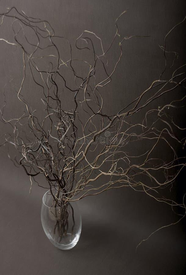 ваза хворостин стоковые изображения rf