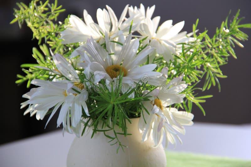 ваза цветков стоковые изображения rf
