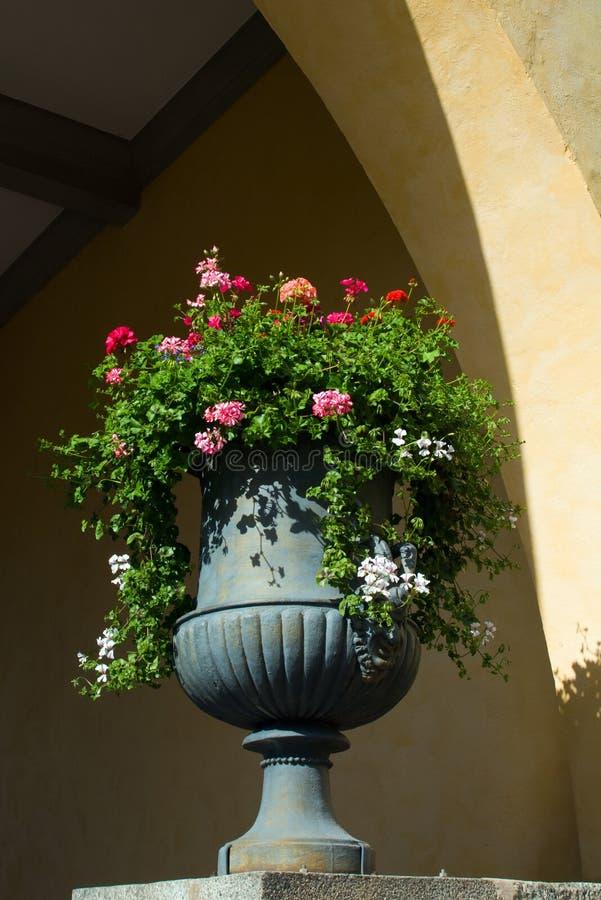 Download ваза цветков стоковое изображение. изображение насчитывающей вакханические - 41658871