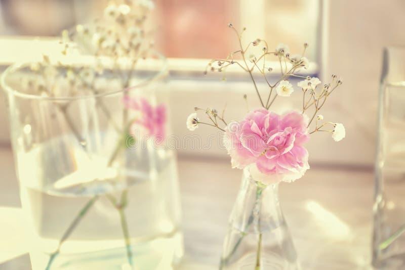 Вазы с красивыми розовыми цветками на windowsill стоковые изображения