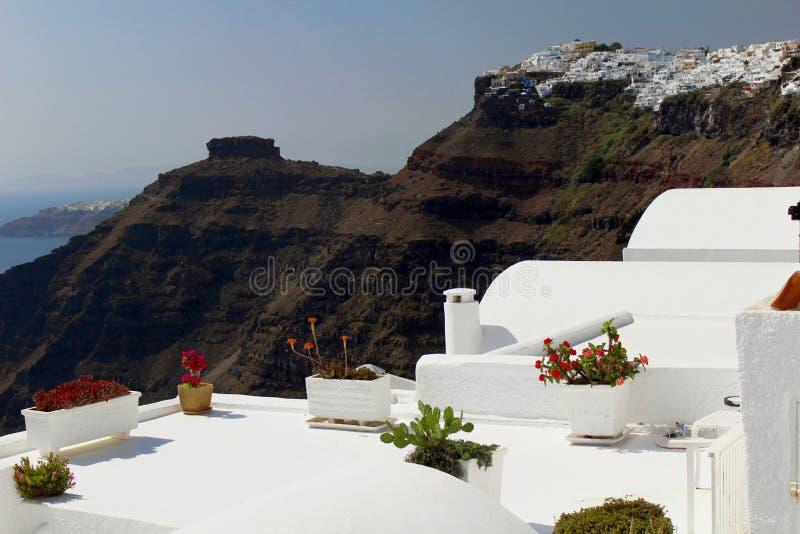 Вазы цветков в изумлять предпосылку острова Santorini стоковые изображения