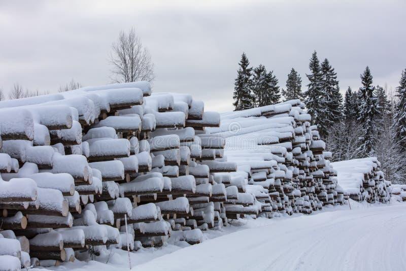 Валка леса и большой стог деревьев в Финляндии стоковая фотография rf