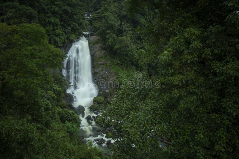 Валлам: водопад на дороге Кочин Муннар, станция Муннар Хилл, Керала, Индия стоковое фото rf