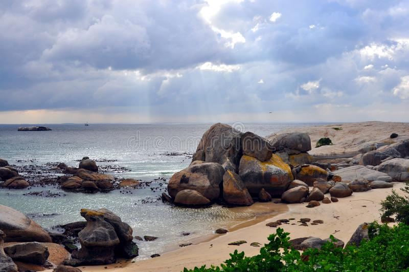 Валуны приставают к берегу, Южная Африка, африканская колония пингвинов стоковые фотографии rf