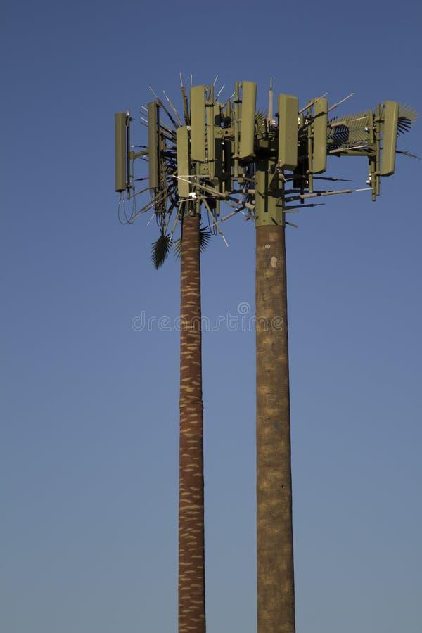 валы башни ладони клетки стоковая фотография rf