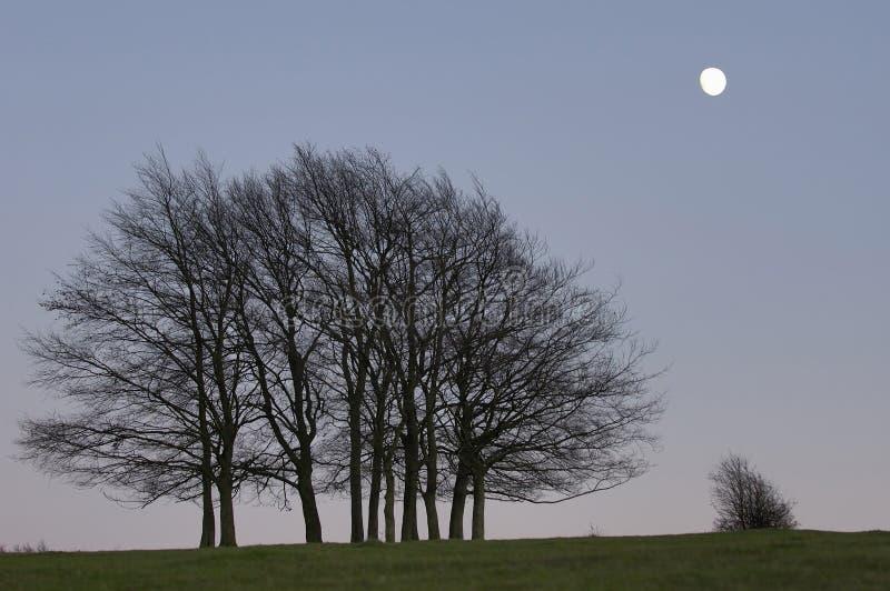 валы захода солнца луны группы малые стоковое изображение rf
