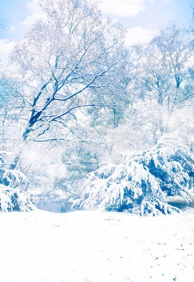 Валы зимы стоковое фото rf