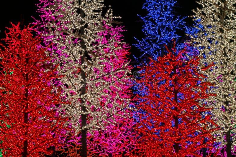 валы искусственного света стоковая фотография rf