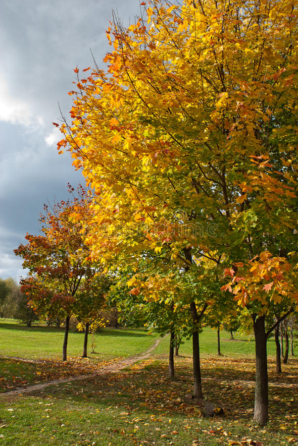 валы парка осени стоковая фотография