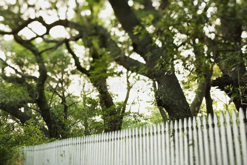 валы пикетчика загородки белые стоковая фотография rf