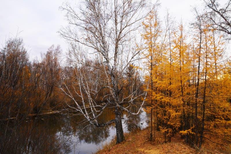 валы реки яркого ландшафта осени рисуночные стоковая фотография rf
