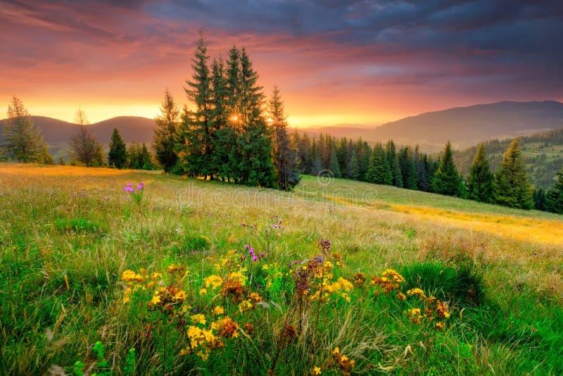 валы силуэта утра ландшафта дома тумана Зеленый луг и красочное небо на восходе солнца стоковая фотография rf