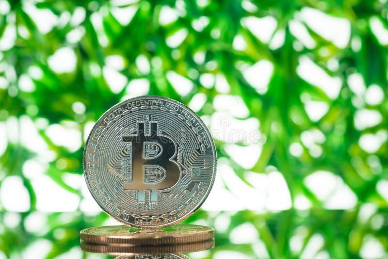 Валюта Bitcoin цифровая, бит-монетка на зеленой запачканной предпосылке bokeh, концепции денег Cryptocurrency стоковые фотографии rf
