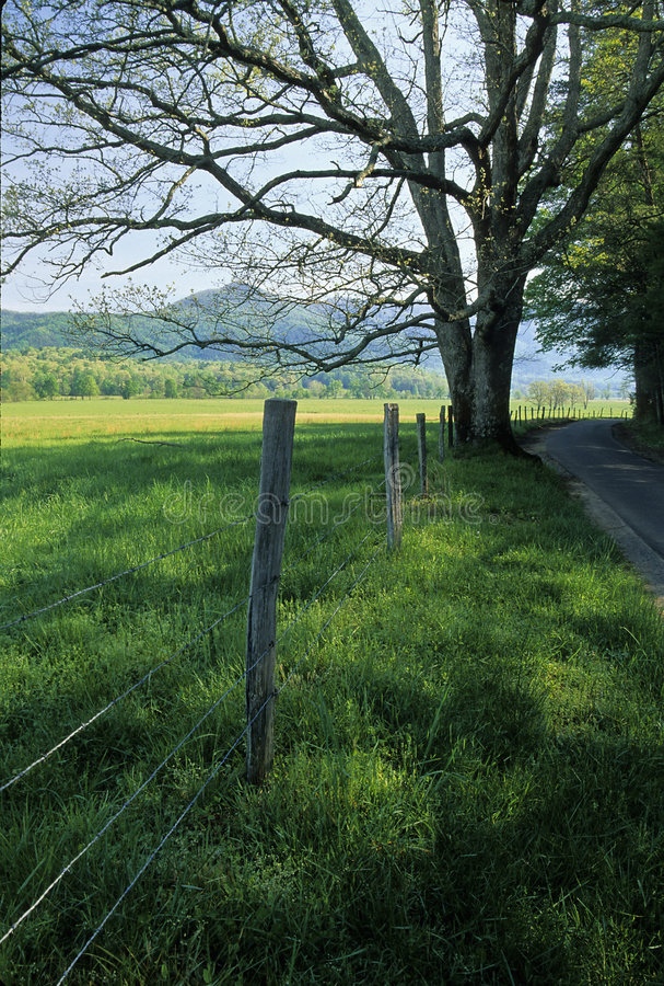 вал весны дороги загородки стоковые фотографии rf