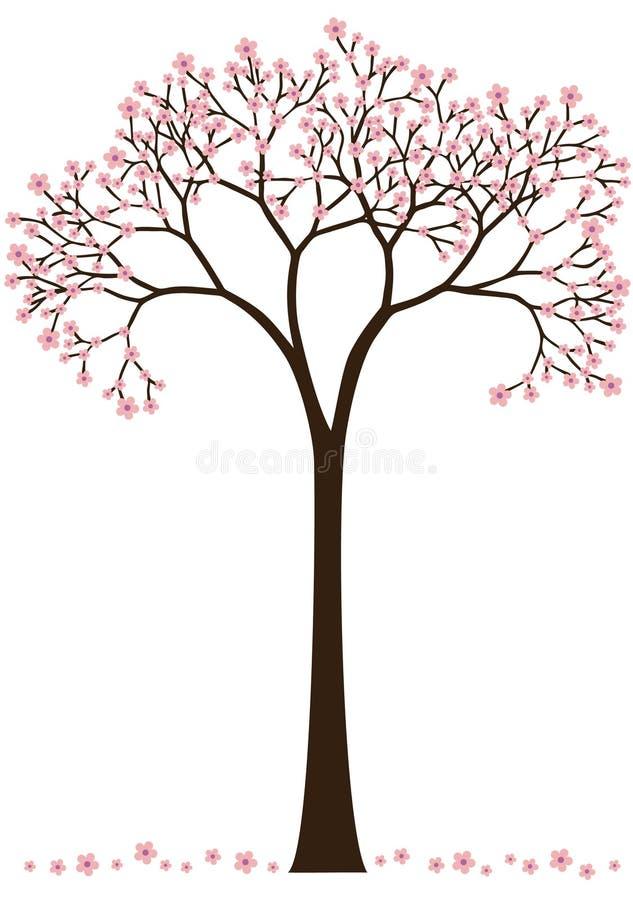 вал вишни цветения иллюстрация вектора