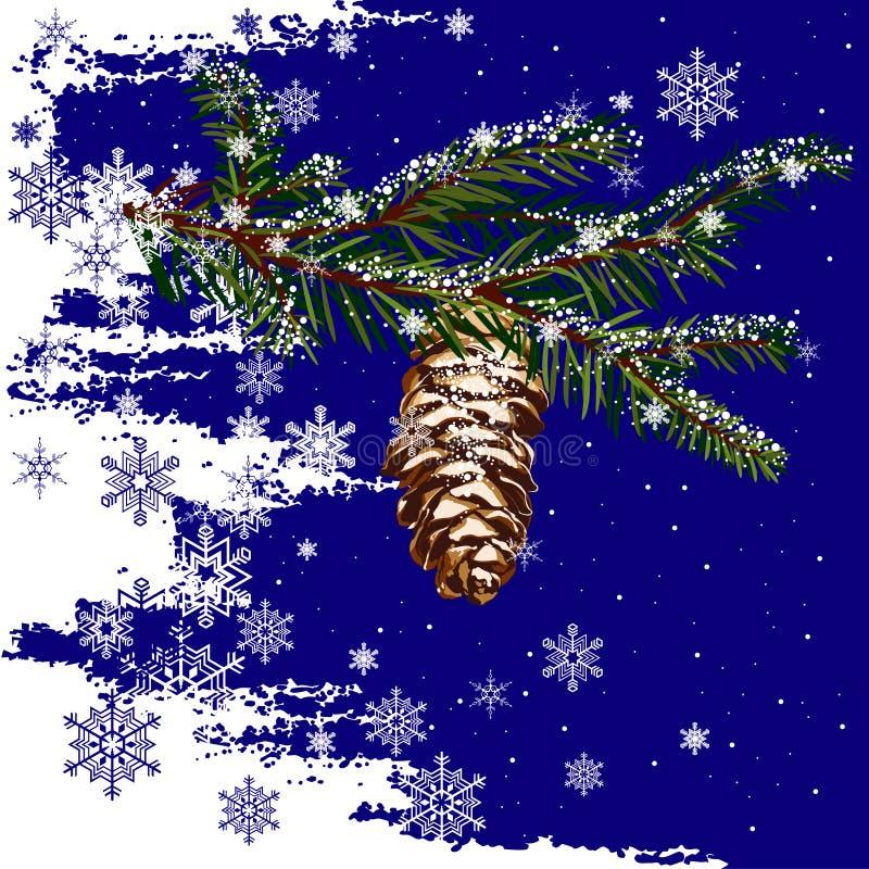 вал ели конуса ветви бесплатная иллюстрация