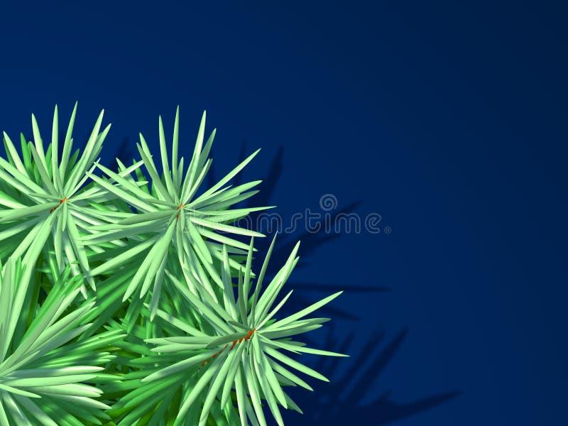 вал ели предпосылки голубой стоковое фото