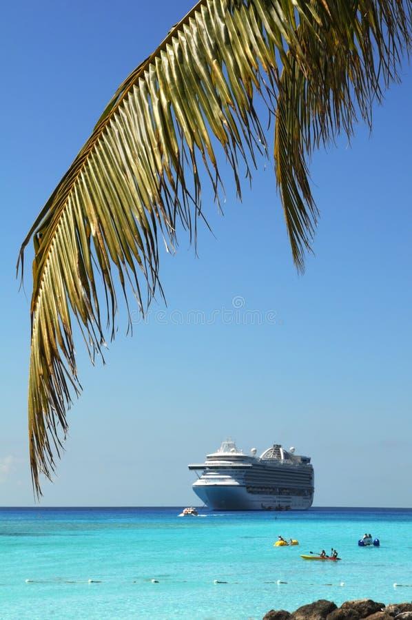 вал корабля ладони круиза ветви стоковые фотографии rf