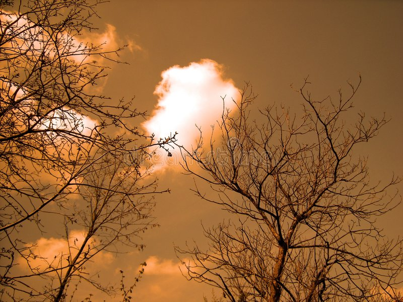 вал неба стоковое фото rf