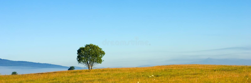 вал панорамы стоковое фото