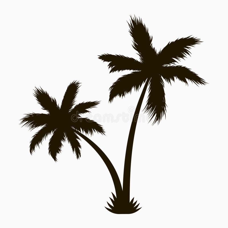 вал силуэта ладони Реалистический тропический завод вектор иллюстрация штока