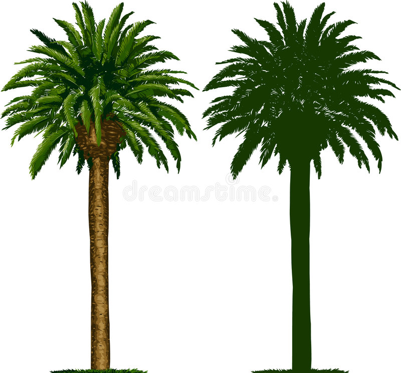 вал силуэта ладони california иллюстрация вектора