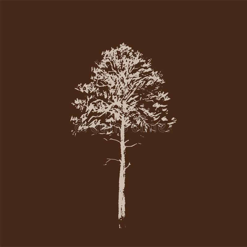 вал сосенки озера baikal предпосылки Линия чертеж изолированный на коричневой предпосылке Эскиз нарисованный рукой также вектор и иллюстрация штока