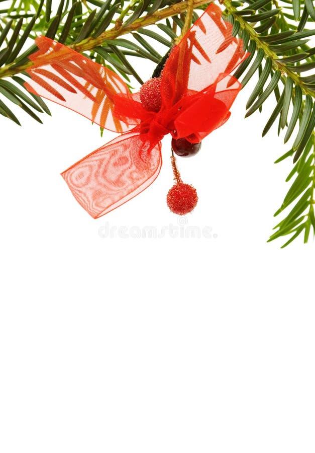 вал сосенки рождества граници стоковое изображение rf