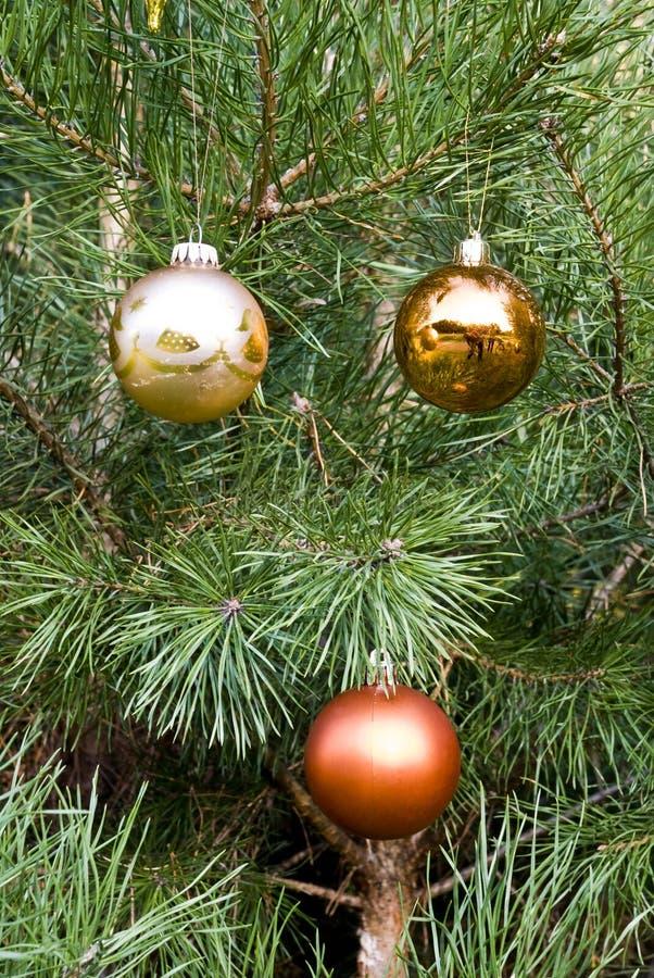 вал сосенки украшения рождества стоковое изображение