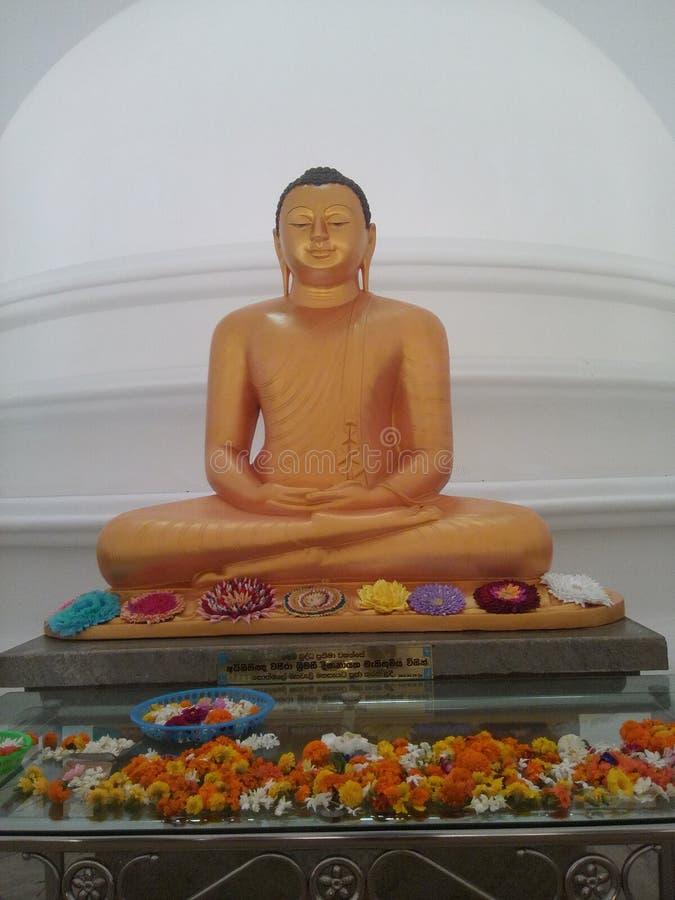 вал статуи раздумья Будды bodhi вниз стоковая фотография rf