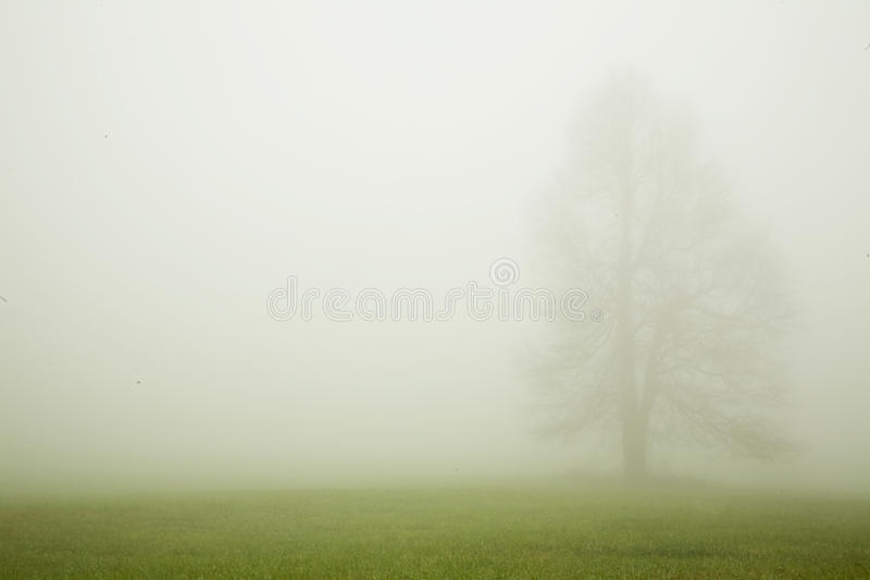 Download вал тумана стоковое изображение. изображение насчитывающей ландшафт - 17606145