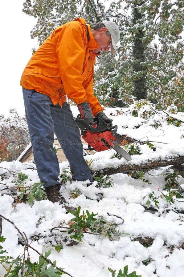 вал человека chainsaw упаденный вырезыванием стоковое фото rf