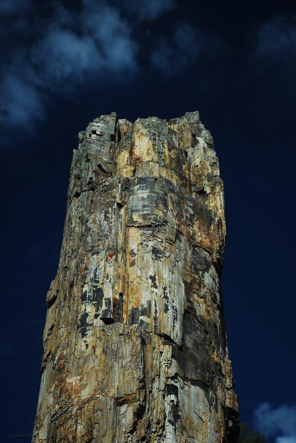 вал yellowstone национального парка окаменелый стоковые фотографии rf