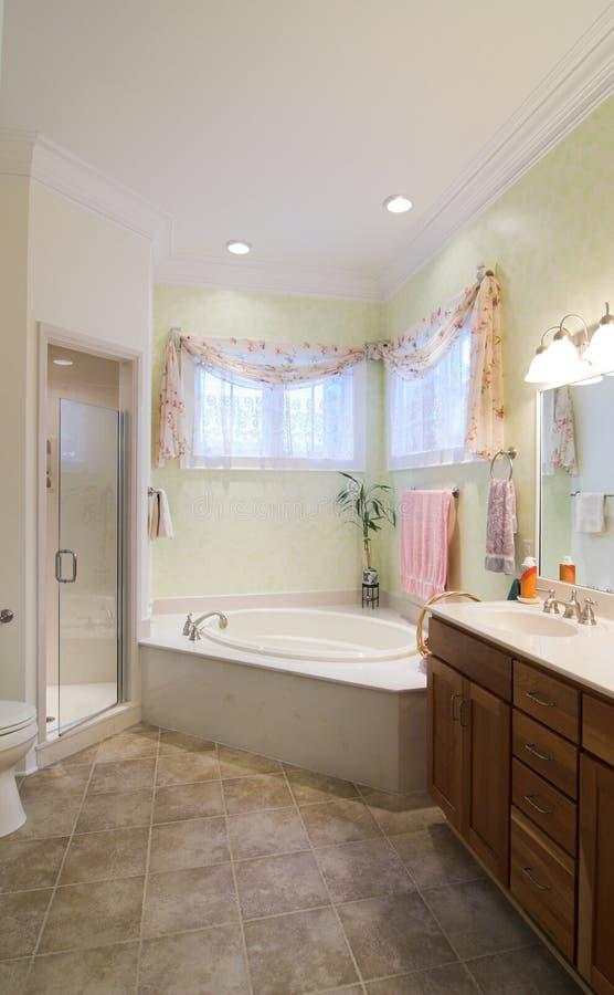 ванная комната шикарная стоковая фотография rf