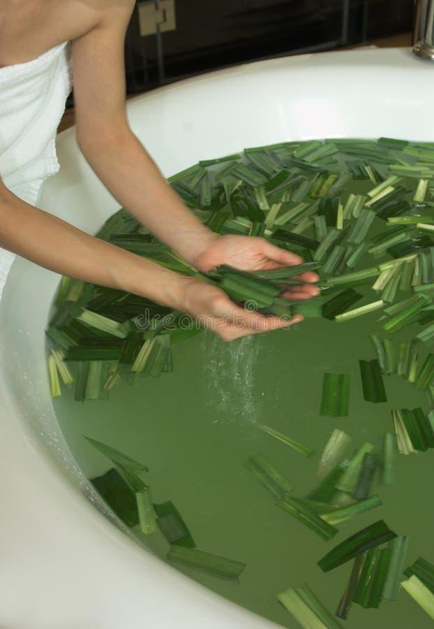 ванна выходит спа стоковые изображения