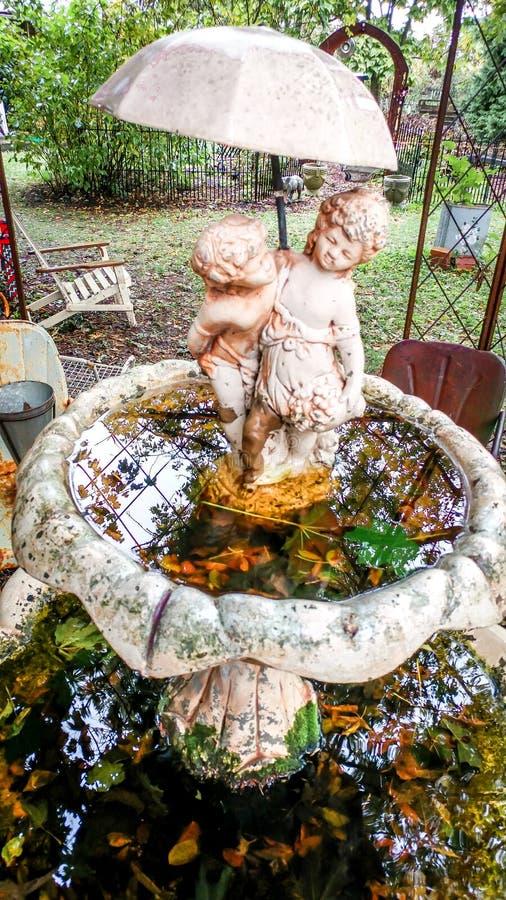Ванна птицы сада заполненная с водой, листьями, отражениями стоковое изображение