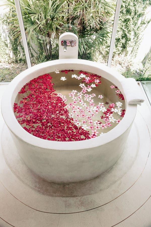 Ванна роскоши курорта стоковое изображение