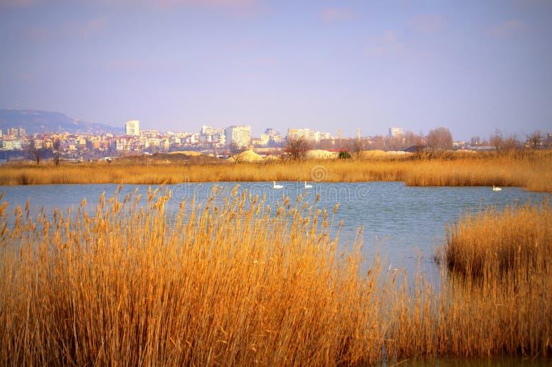 Варна, Болгария стоковое изображение rf