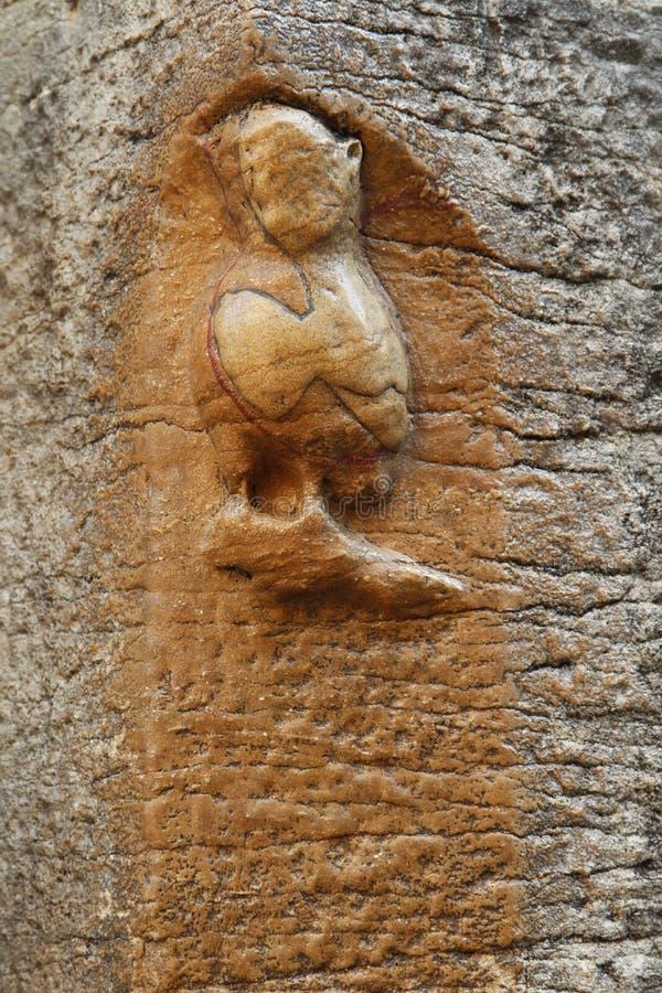 Ваяемый сыч церков Нотр-Дам, Дижона, Франции стоковое фото
