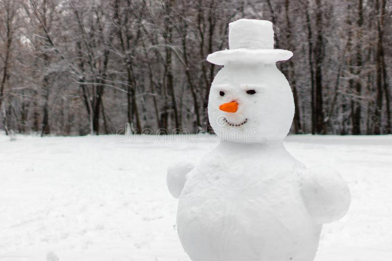 Ваяйте снеговик в зимних отдыхах стоковые фото