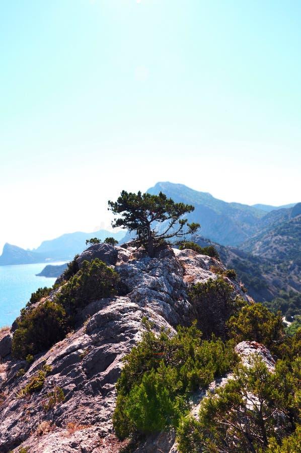 вал горы верхний стоковая фотография