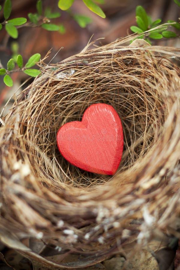 Валентинка гнезда влюбленности стоковая фотография rf