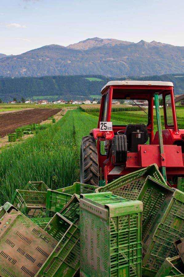 валы трактора поля предпосылки стоковое фото